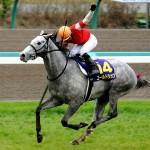 特別登録馬発表・ゴールドシップ史上初の3連覇へ
